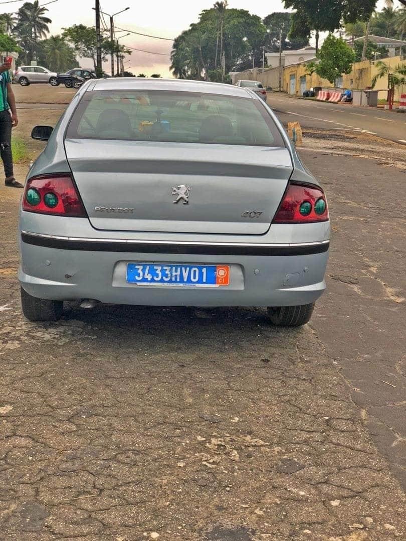 Peugeot 407 Année 2005